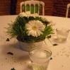 Décoration de table verte