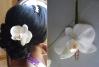 fleurs coiffures