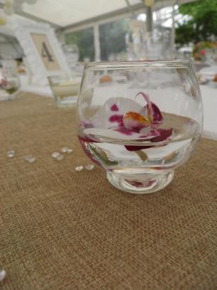 Orchidée mariage